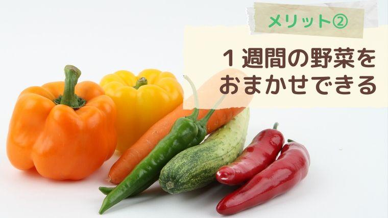 らでぃっしゅぼーやのメリット②野菜ボックスに1週間の野菜をお任せできる
